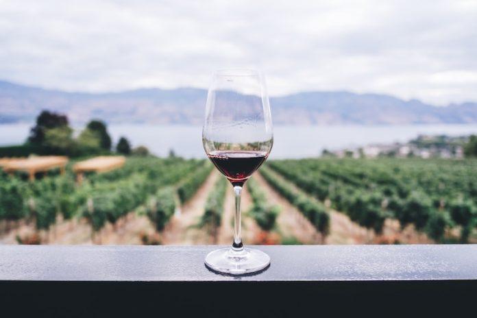 dove si beve più vino