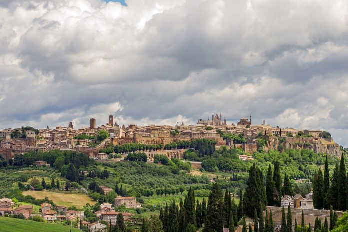 Vitigni in Umbria